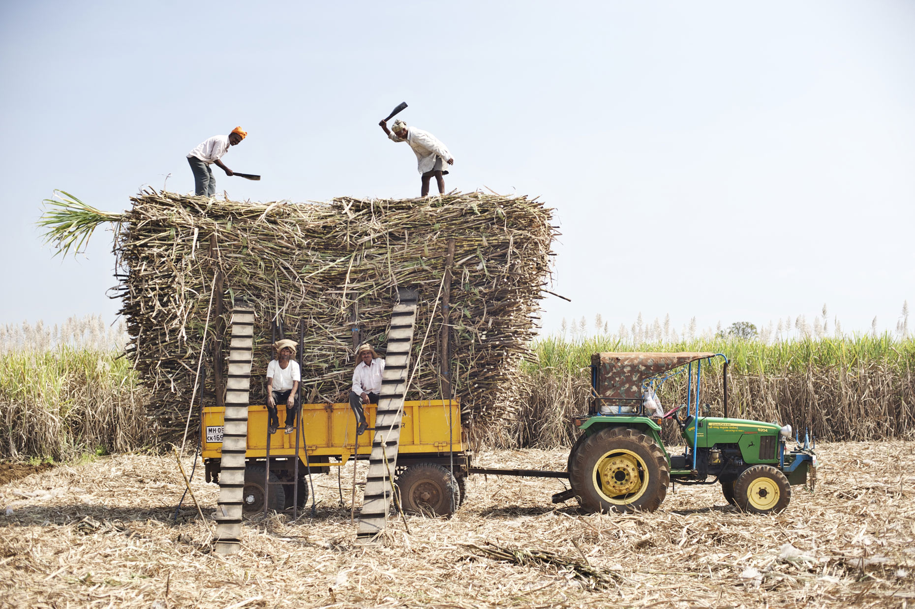 Farmers photographed for Olam